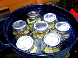 Cucumber Pickles - Water boiling process