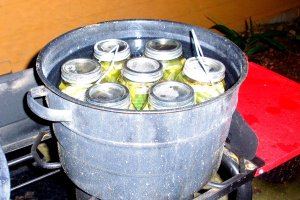 Boiling Process for Pickling Okra
