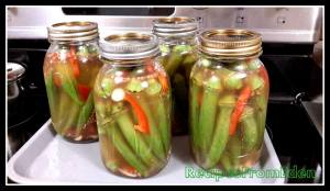 Homemade Pickled Okra - Canned